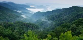 tn-wilderness-casepage